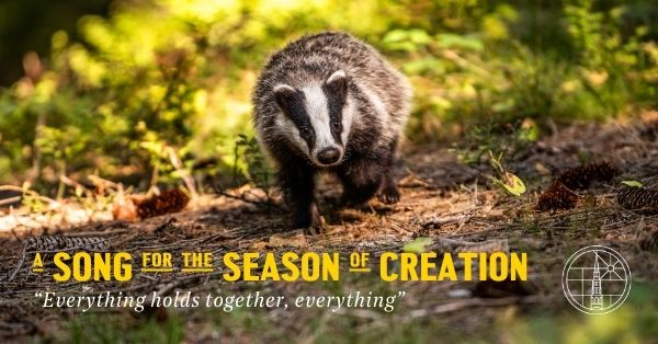 A Song for the Season of Creation text with badger walking through woods